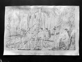 Simeon Shaw 1823 Antique Print. Puris Indians marching in their Woods. Brazil